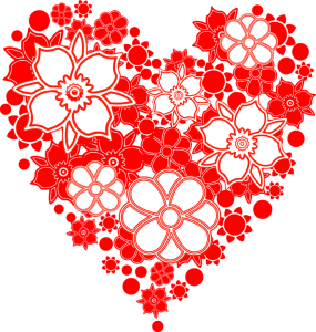 flowers-1300579_960_720